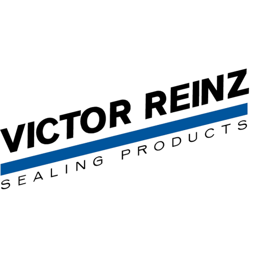 Victor Reinz Oil Seal 79 38x95 25x11 Ford